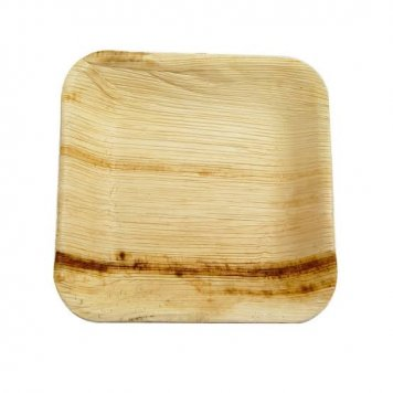 Palm leaf plates - Square